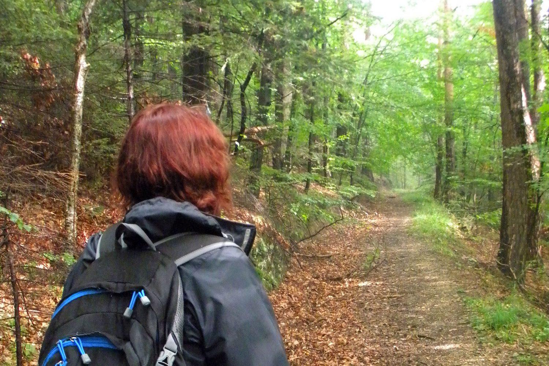 Wild nature walk